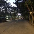 1月15日のヤンゴンの朝 (3)