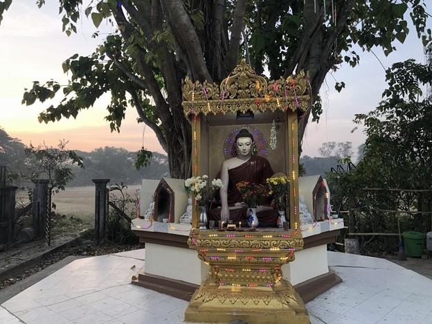 1月15日のヤンゴンの朝 (19)