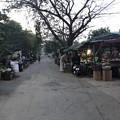 Photos: 1月15日のヤンゴンの朝 (13)