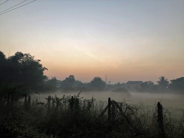 1月19日のヤンゴンの朝 (12)