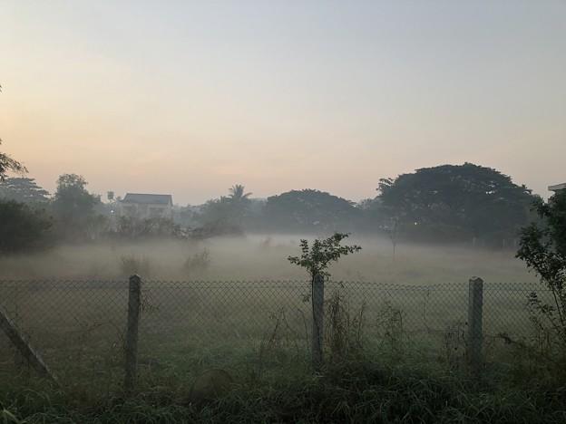 1月19日のヤンゴンの朝 (11)