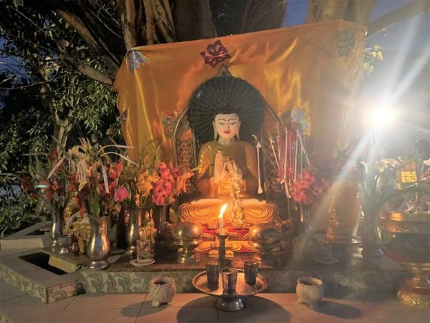 1月19日のヤンゴンの朝 (5)