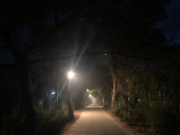 1月19日のヤンゴンの朝 (4)