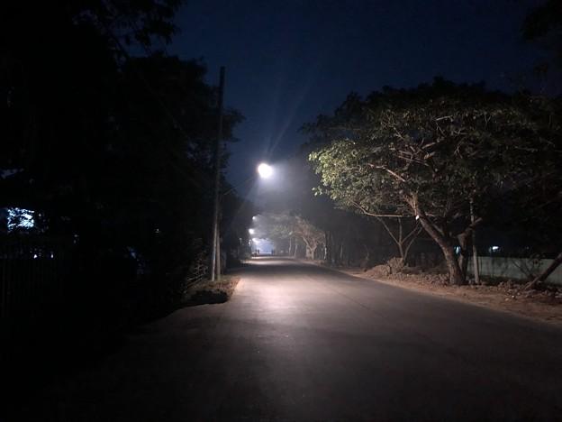 1月19日のヤンゴンの朝 (1)