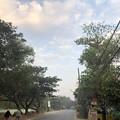 1月20日のヤンゴンの朝 (10)