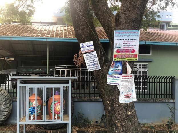 1月21日のヤンゴンの朝 (13)