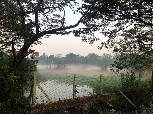 1月21日のヤンゴンの朝 (12)