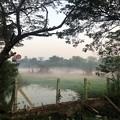 Photos: 1月21日のヤンゴンの朝 (12)
