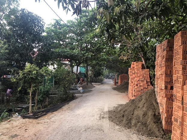 1月21日のヤンゴンの朝 (11)