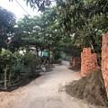 Photos: 1月21日のヤンゴンの朝 (11)