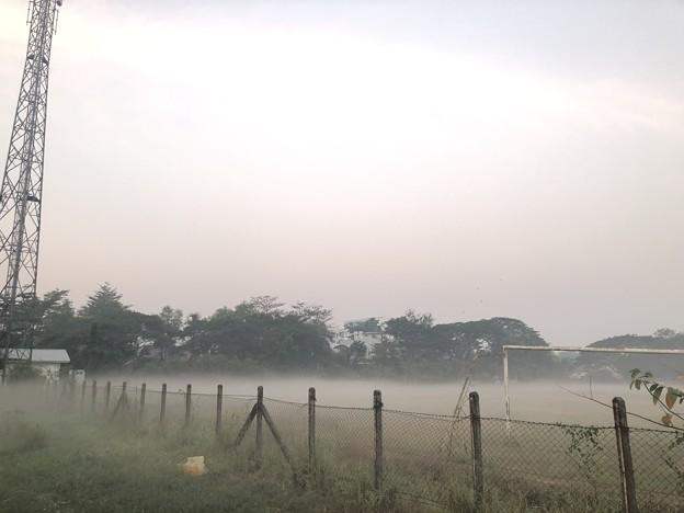 1月21日のヤンゴンの朝 (6)