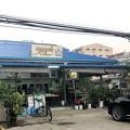 Photos: 1月21日のヤンゴンの朝 (8)