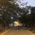 Photos: 1月21日のヤンゴンの朝 (4)
