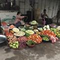 Photos: 1月22日のヤンゴンの朝 (6)