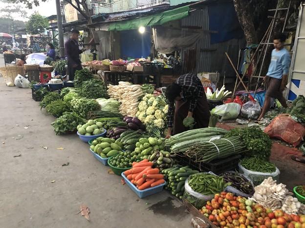 1月22日のヤンゴンの朝 (4)
