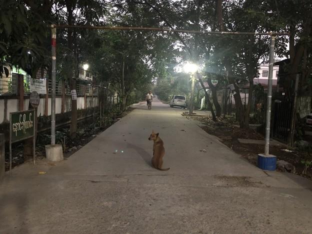 1月22日のヤンゴンの朝 (2)