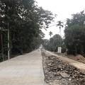 Photos: 1月22日のヤンゴンの朝 (15)