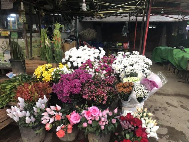 Photos: 1月22日のヤンゴンの朝 (12)