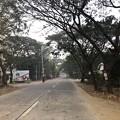 Photos: 1月22日のヤンゴンの朝 (14)
