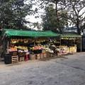 Photos: 1月223日のヤンゴンの朝 (17)