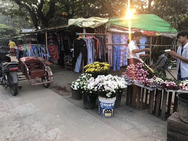 1月223日のヤンゴンの朝 (16)