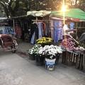 Photos: 1月223日のヤンゴンの朝 (16)