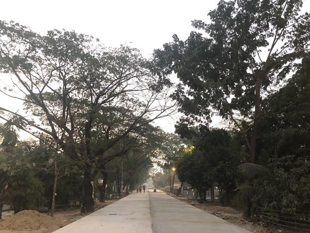 1月25日のヤンゴンの朝 チョイ寒いぞ (8)