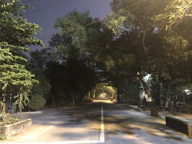 1月25日のヤンゴンの朝 チョイ寒いぞ (1)