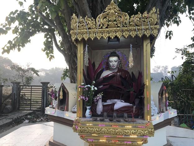 1月25日のヤンゴンの朝 チョイ寒いぞ (21)