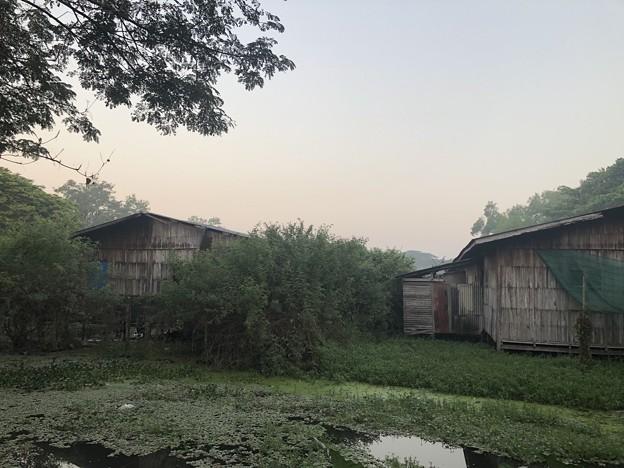いつもより暗く感じる1月26日のヤンゴンの朝 (13)