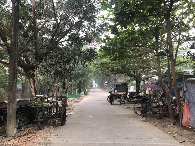 いつもより暗く感じる1月26日のヤンゴンの朝 (12)