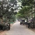 Photos: いつもより暗く感じる1月26日のヤンゴンの朝 (12)