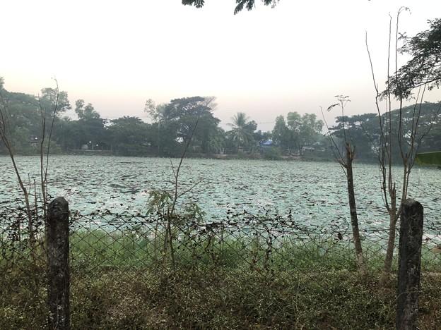 いつもより暗く感じる1月26日のヤンゴンの朝 (10)