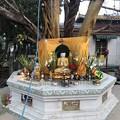 Photos: いつもより暗く感じる1月26日のヤンゴンの朝 (17)