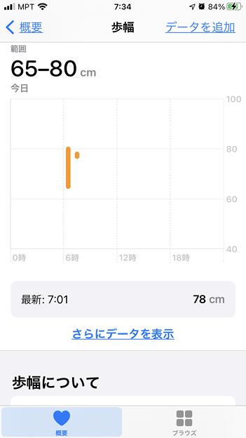 1月26日の歩行距離 (3)