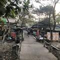 Photos: 寝坊した朝のヤンゴン1月27日 (7)