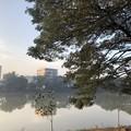 Photos: 寝坊した朝のヤンゴン1月27日 (19)