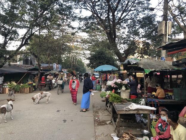 Photos: 寝坊した朝のヤンゴン1月27日 (13)
