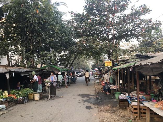 寝坊した朝のヤンゴン1月27日 (12)