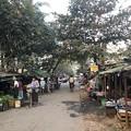 Photos: 寝坊した朝のヤンゴン1月27日 (12)