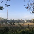 Photos: 寝坊した朝のヤンゴン1月27日 (22)