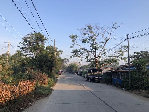 寝坊した朝のヤンゴン1月27日 (21)