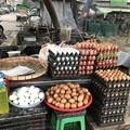 Photos: 寝坊した朝のヤンゴン1月27日 (6)