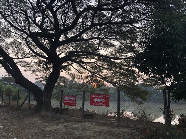 ヤンゴンもやの朝な1月28日 (4)