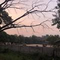 ヤンゴンもやの朝な1月28日 (2)