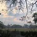 Photos: あさもやなヤンゴン 1月29日 (9)