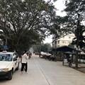 Photos: あさもやなヤンゴン 1月29日 (8)
