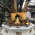 Photos: あさもやなヤンゴン 1月29日 (7)