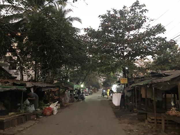 ヤンゴン1月最終日 (14)