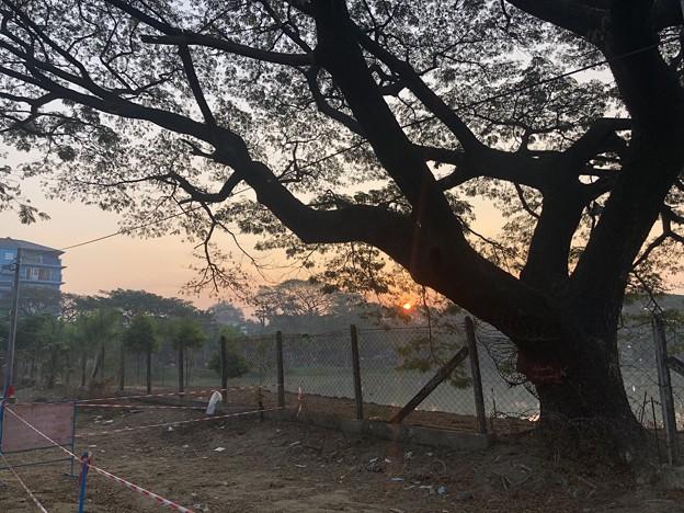 ヤンゴン1月最終日 (25)